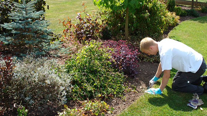 Attractive Garden Maintenance Leamington Spa